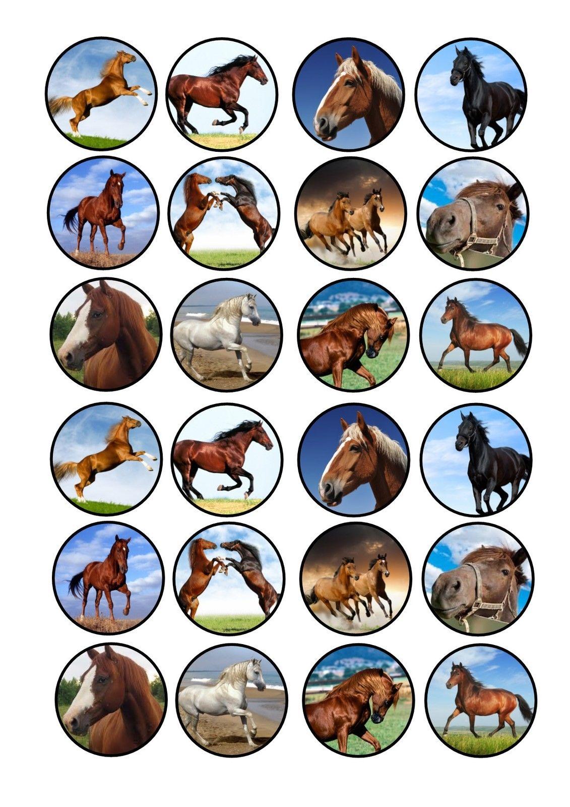 Pony Cupcakes - Topcake Ireland